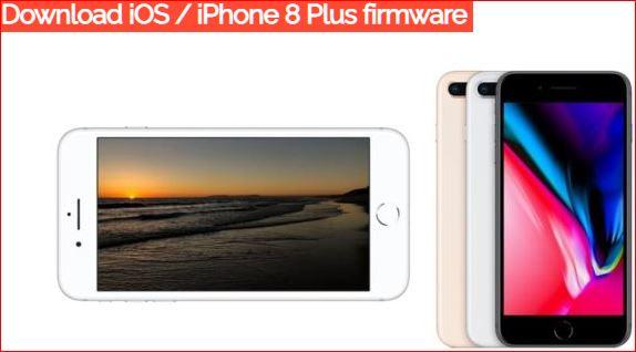 Download iPhone 8 Plus Firmware iOS 12.4.1